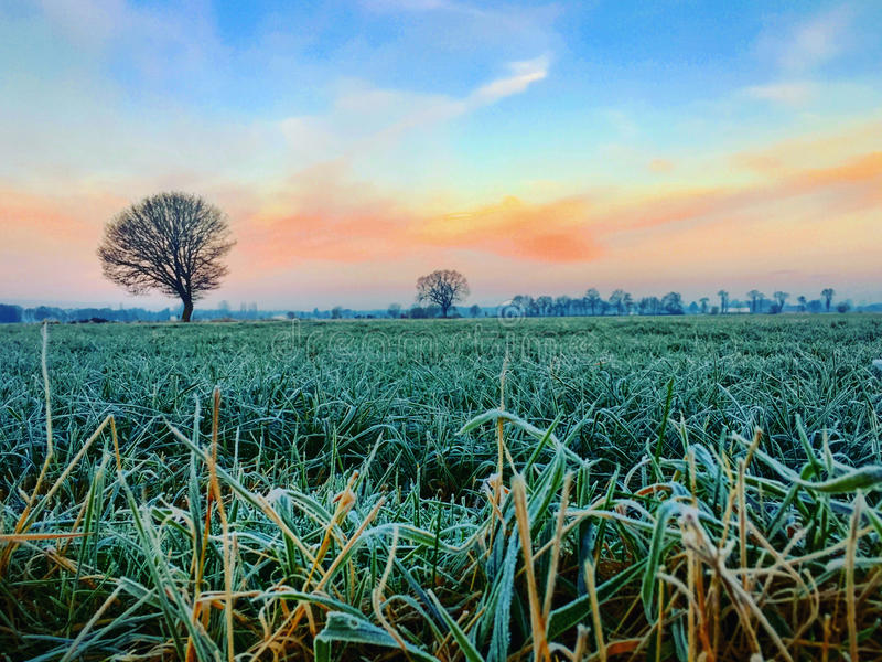Countryside frozen sunrise. Colorful countryside sunrise over a frosted field stock photos