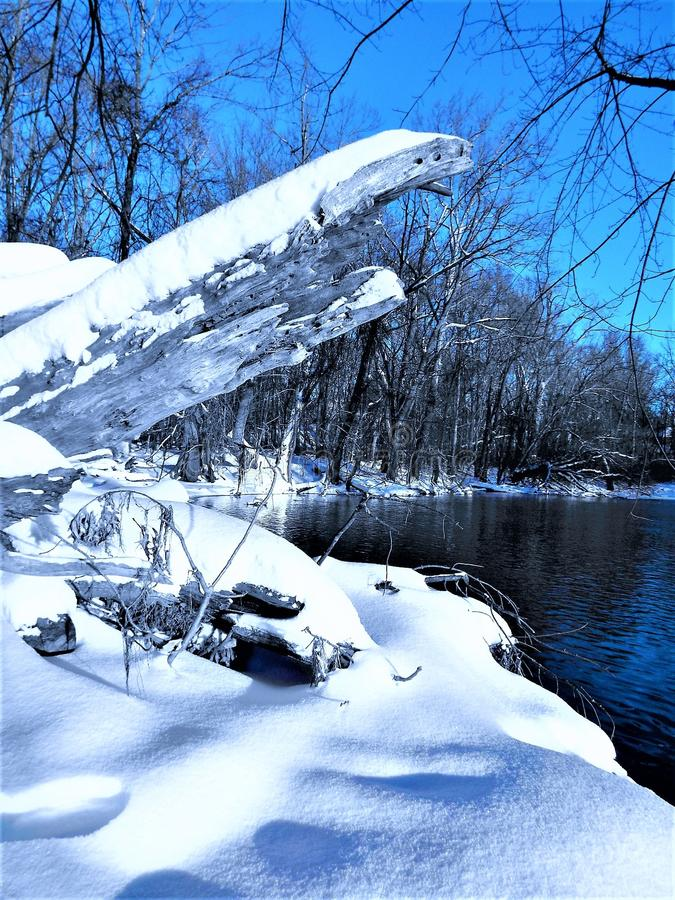 Countryside lake in winter royalty free stock photography