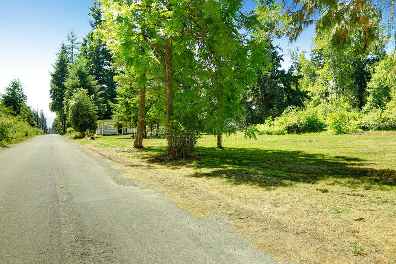 Countryside landscape and driveway. Countryside landscape during summer time. View of driveway with trees alongside royalty free stock photos
