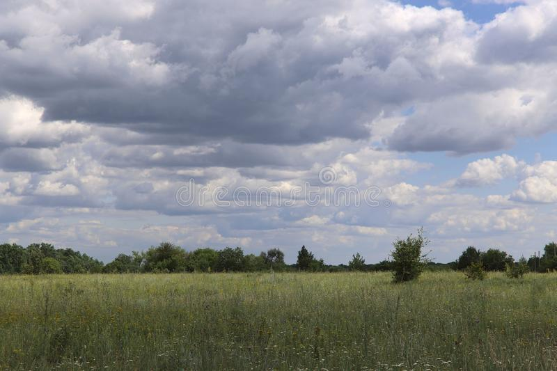 Countryside landscape. A field with wildflowers against a blue sky with fluffy clouds. The concept of natural beauty stock photography