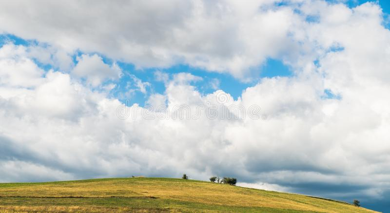 Countryside landscape: hill and lonely tree. A typical natural landscape: yellow and green fields and lonely trees. Panoramic view. Daytime countryside landscape royalty free stock image