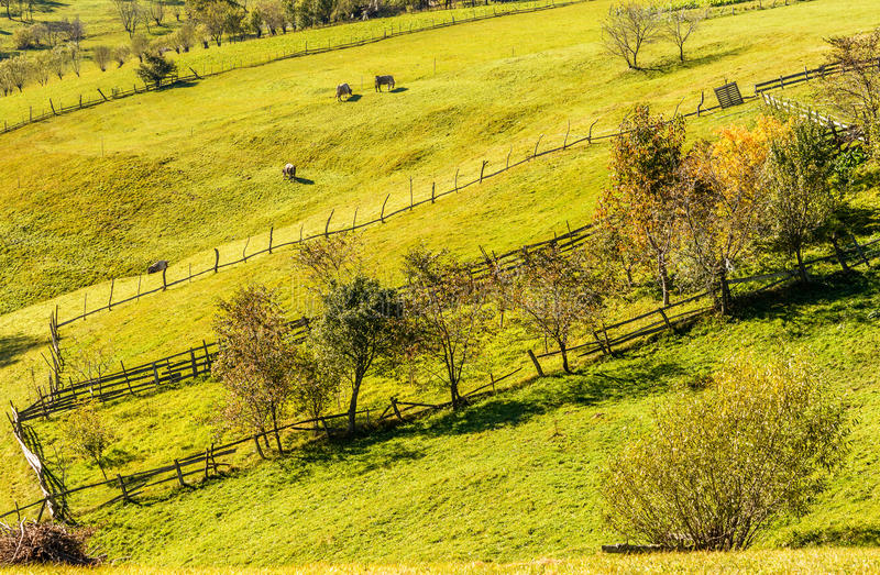 Countryside landscape in a romanian villlage. At the food of Piatra Craiului Mountains royalty free stock photos