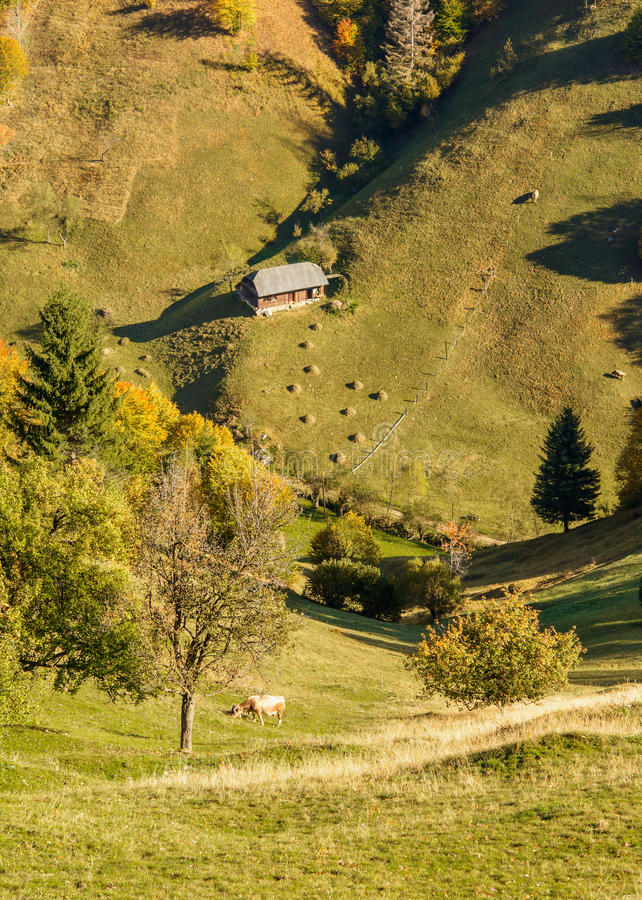 Countryside landscape in a romanian villlage. At the food of Piatra Craiului Mountains royalty free stock image