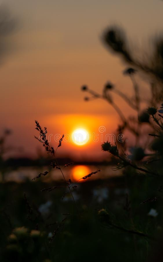 Scenic countryside landscape at sunset royalty free stock images