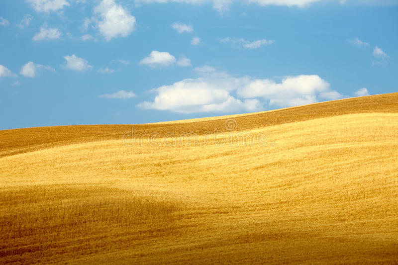 Download Countryside Landscape In Tuscany Region Stock Photo - Image of light, farmland: 25375480