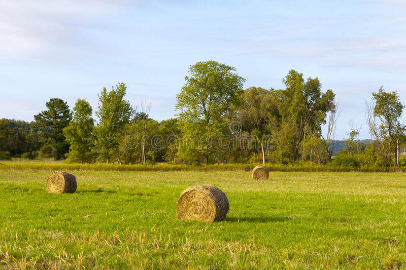 Download Countryside in the morning stock photo. Image of american - 26512778