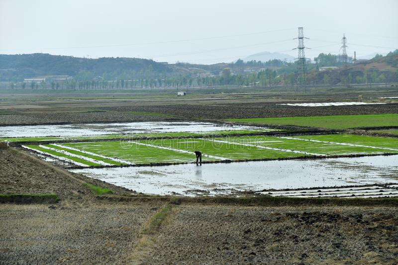 North Korea. Countryside stock images