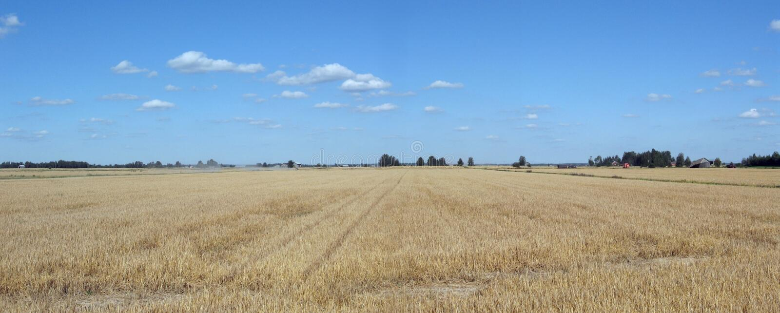 Download Countryside panorama stock photo. Image of landscape, grain - 3015180