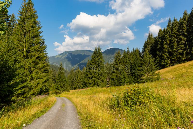 Countryside road in mountain valley royalty free stock image
