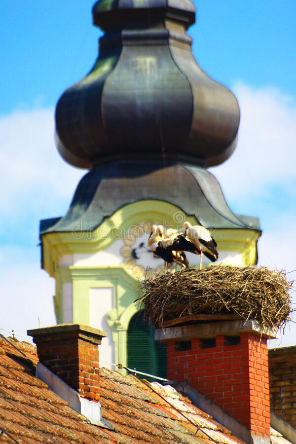 Countryside Rooftops, Slovenia royalty free stock photography