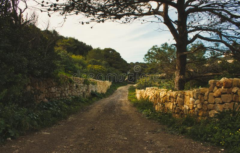 Countryside scene with dirt path and stone rubble walls and tree stock images
