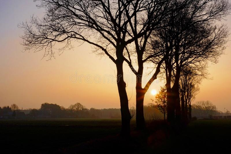 Countryside sunset over the fields behind the trees. Orange countryside sunset over the fields behind the trees in silhouetter stock photo