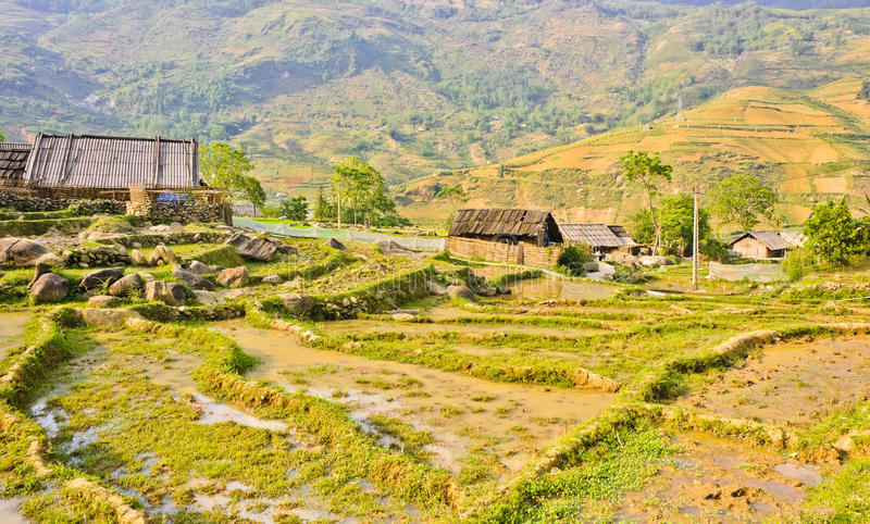 Countryside of Vietnamese hill tribe village. Countryside of rice crops in Sapa, Vietnam royalty free stock photo