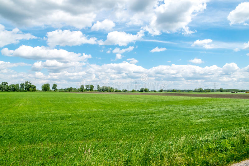 Countryside view with green fields, blue sky, and white clouds stock photography
