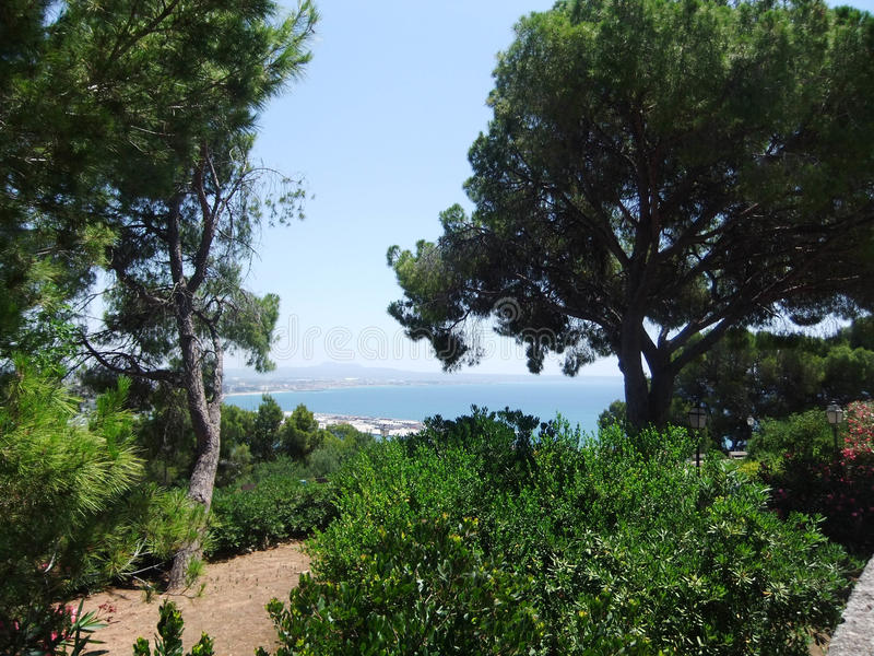 Countryside view of greenery in Palma de mallorca stock images