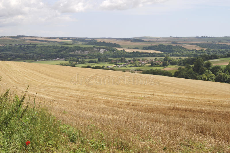 Download Countryside In West Sussex. England Stock Images - Image: 21566364