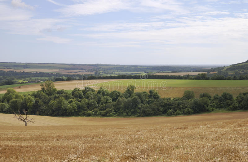 Download Countryside In West Sussex. England Royalty Free Stock Photography - Image: 21566377