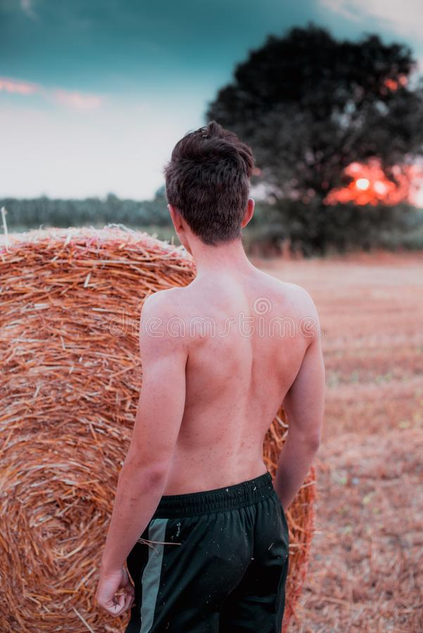 Countryside workout at sunset hight contrast style image stock image