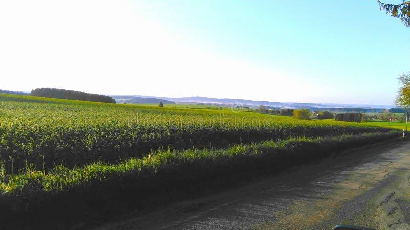 Countryview en la mañana foto de archivo