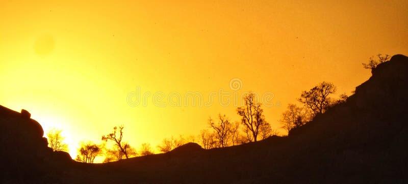 Coup d'oeil de dissimulation du soleil photo libre de droits