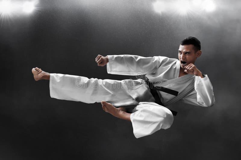 Coup-de-pied de saut de karat? d'arts martiaux image libre de droits