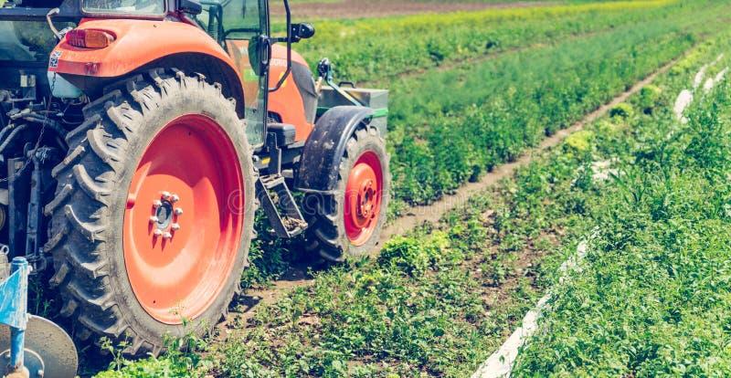 Coup? du tracteur cultivant le champ au printemps, agriculture photos libres de droits