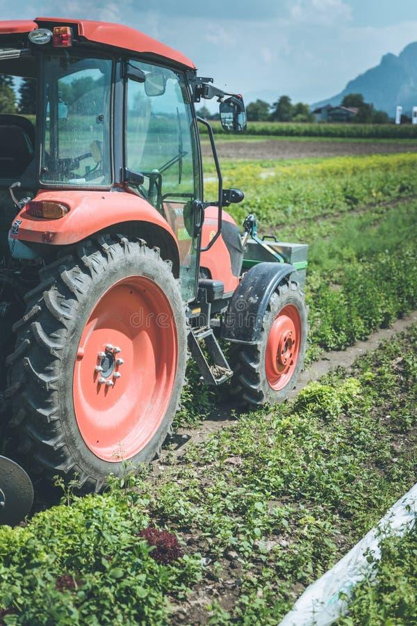 Coup? du tracteur cultivant le champ au printemps, agriculture images stock
