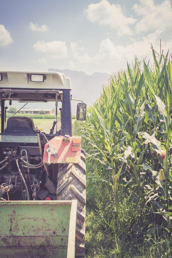 Coup? du tracteur cultivant le champ au printemps, agriculture image libre de droits
