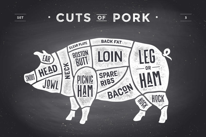 Coupe d'ensemble de viande Diagramme de boucher d'affiche, plan et guide - porc Tiré par la main typographique de vintage Illustr illustration libre de droits