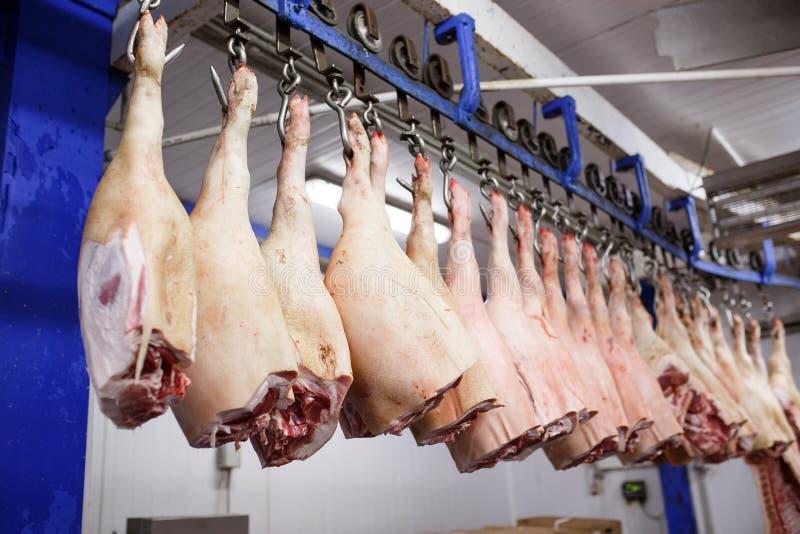 Coupe de carcasses de porc dans la moiti? stock?e dans la chambre de r?frig?rateur de l'usine de traitement des denr?es alimentai images libres de droits