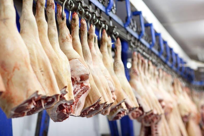 Coupe de carcasses de porc dans la moiti? stock?e dans la chambre de r?frig?rateur de l'usine de traitement des denr?es alimentai photo libre de droits