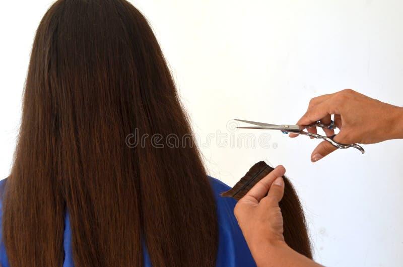 Coupe de cheveux sur les cheveux vraiment longs photographie stock libre de droits