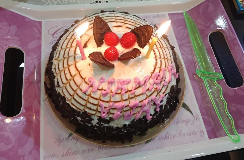 Coupe de gâteau d'anniversaire photos libres de droits
