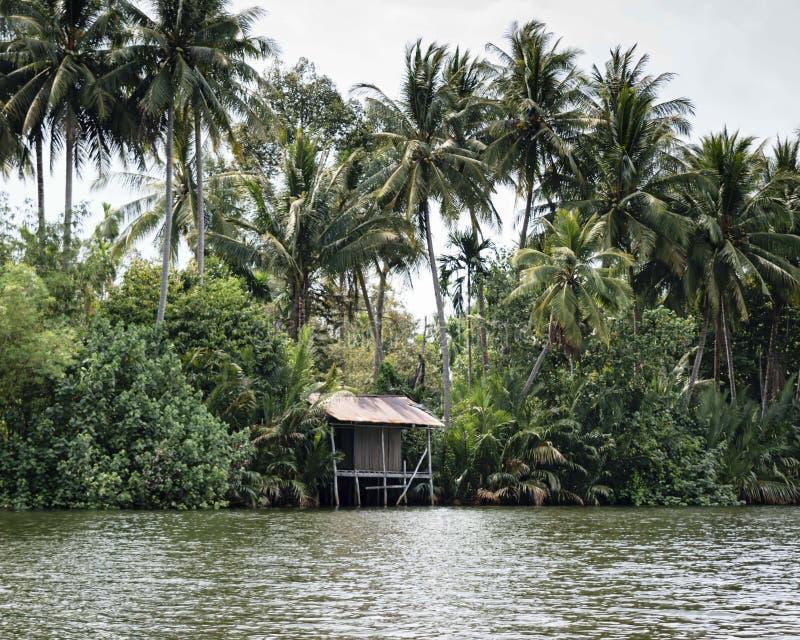 Coupe de Kong de rivière par la jungle dense Un dock en bois a été construit par les gens du pays comme endroit pour arrêter et a images stock