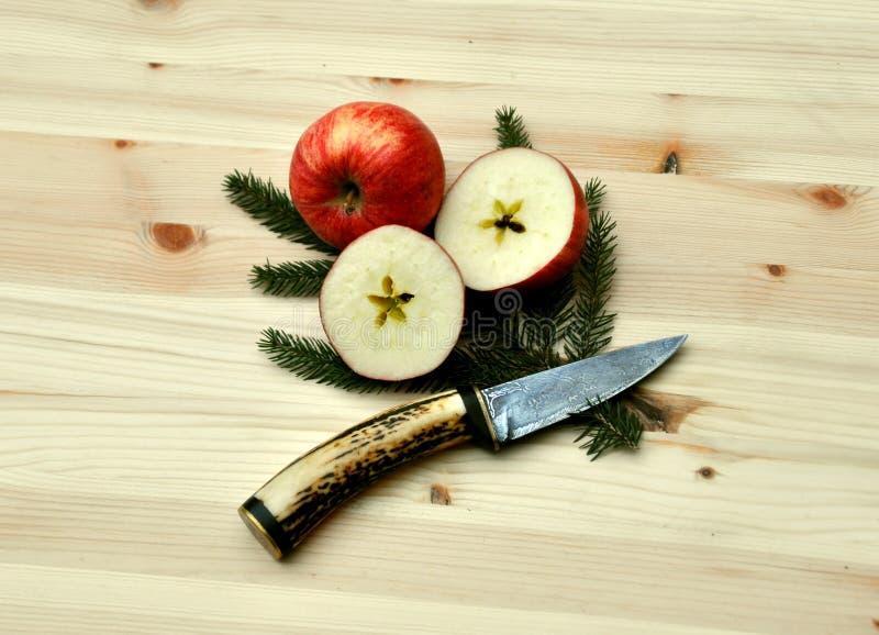 Coupe de pomme de Noël photo libre de droits