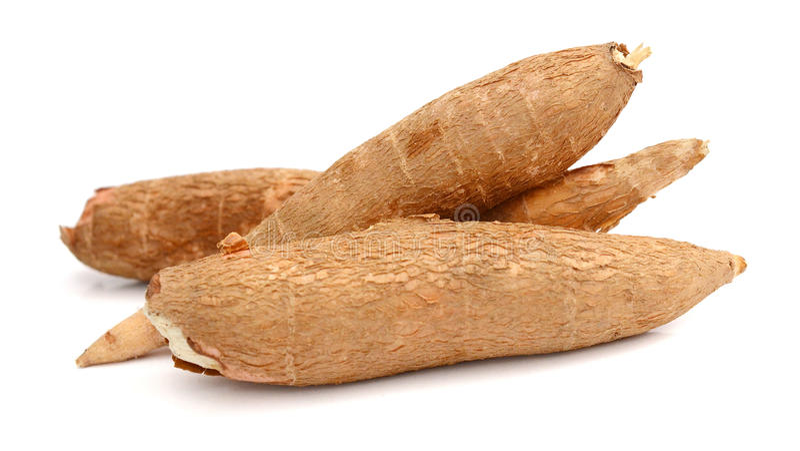 Couper et manioc entier photos stock