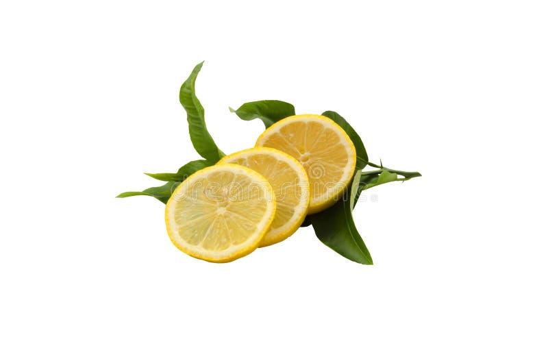 Couper le citron avec les feuilles vertes image stock