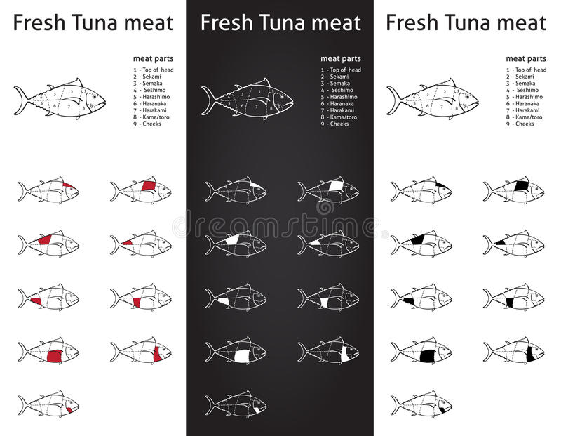 Coupes fraîches de viande de thon réglées illustration de vecteur