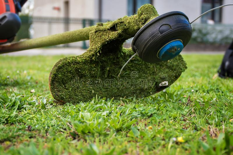 Coupeur d'herbe/coupeur de brosse pour équilibrer l'herbe envahie photo stock