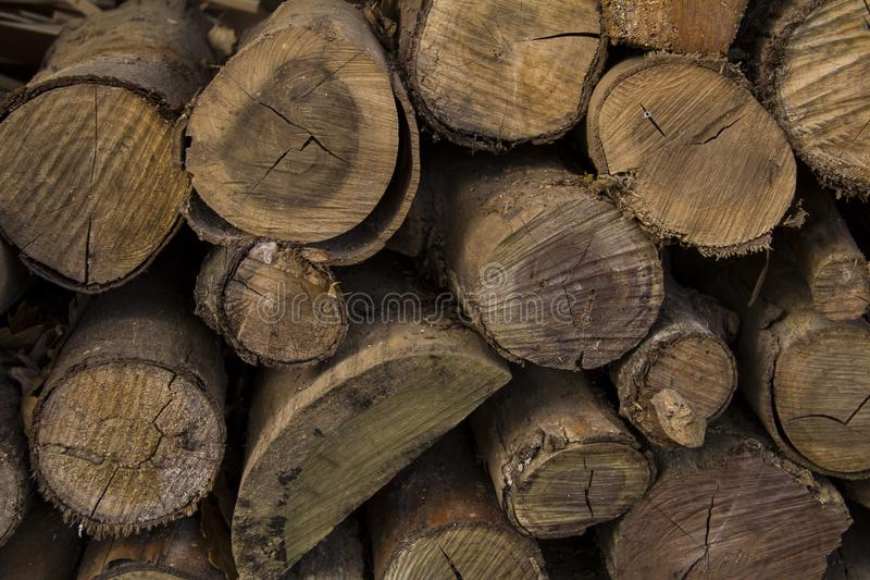 Coupez et avez empilé les troncs d'arbre Texture empilée de rondins, fond naturel photographie stock