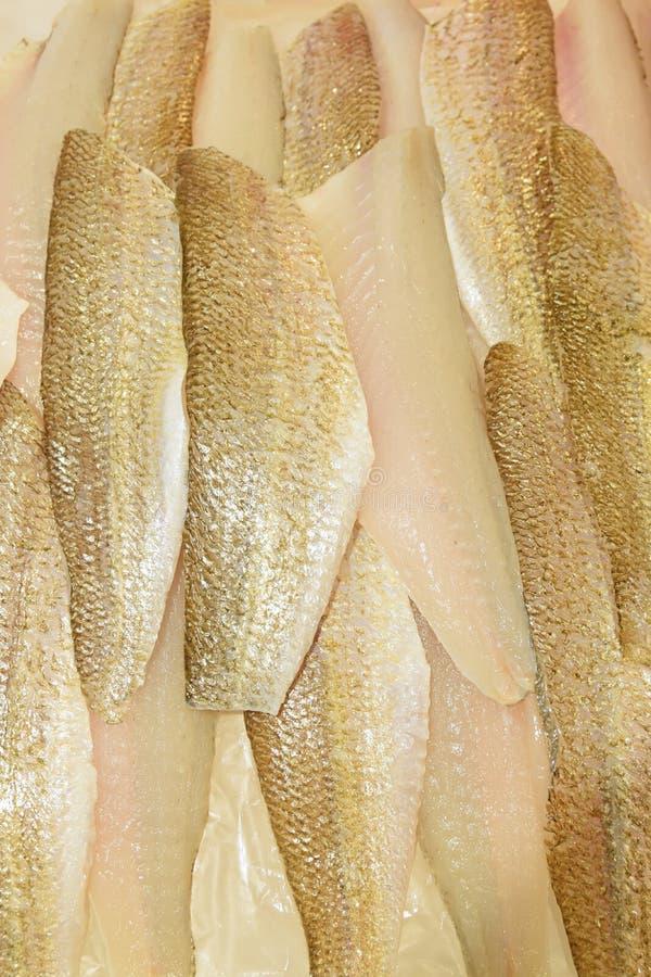 Coupez et avez nettoyé les filets de merlans de sable étant arrangés d'une manière ordonnée sur la glace écrasée sur l'affichage  photographie stock