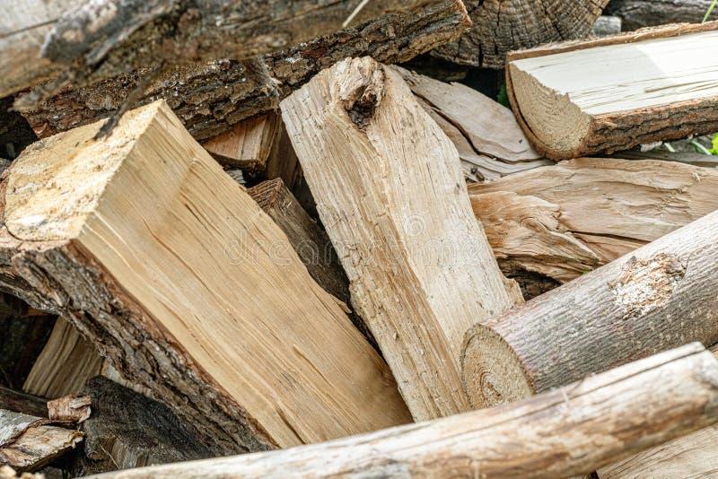 Coupez l'arbre pour le carburant photo libre de droits