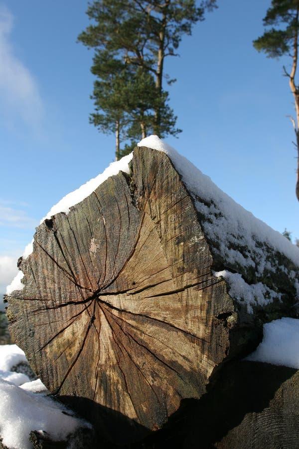 Coupez la neige de procédure de connexion photographie stock