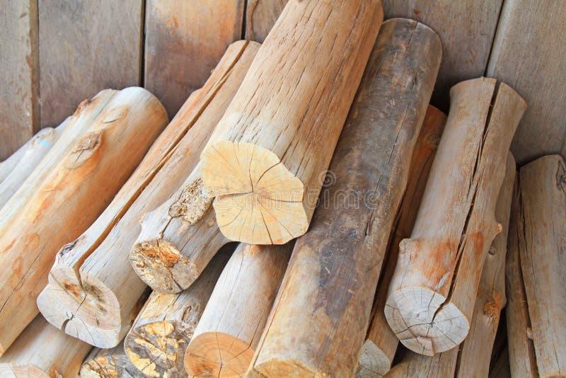 Coupez le bois dans les forêts. photo stock
