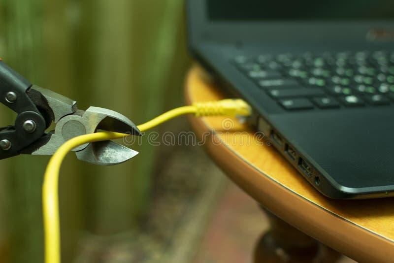 Coupez le câble pour relier l'Internet à une pince image libre de droits