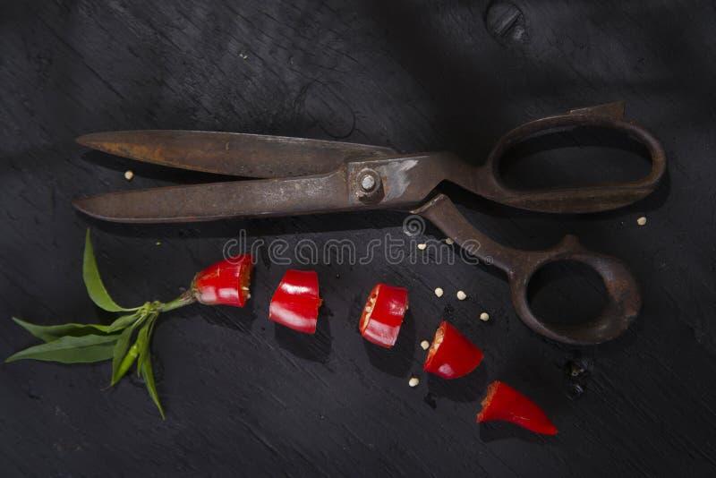 Download Coupez le poivron rouge photo stock. Image du poivron - 45358932