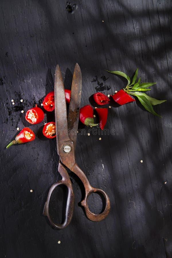 Download Coupez le poivron rouge image stock. Image du ciseaux - 45359553