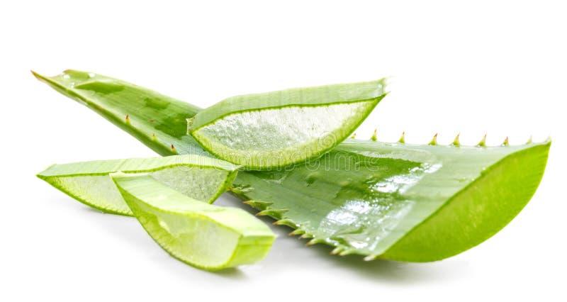 Coupez les feuilles d'aloès photographie stock