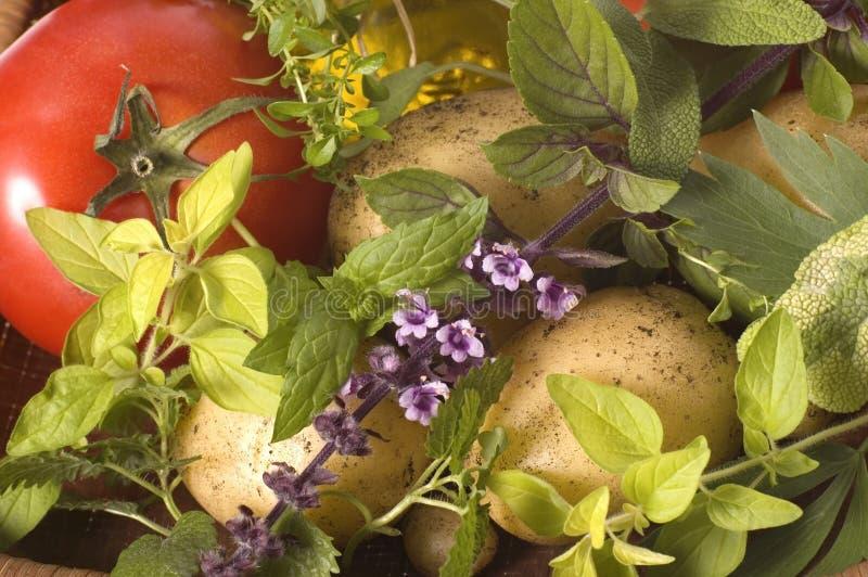 Coupez les herbes et les légumes frais images stock