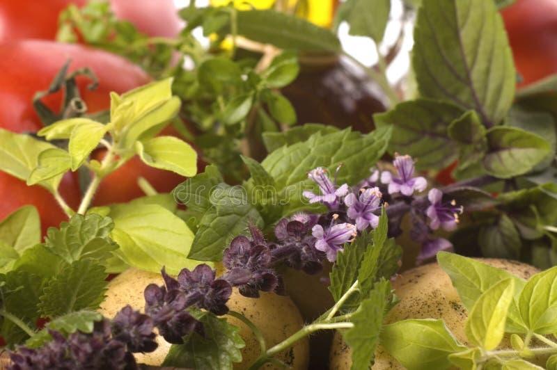 Coupez les herbes et les légumes frais photos stock